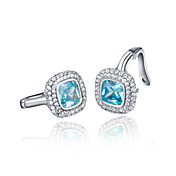 Gorgeous 925 Sterling Silver Platinum Plated AAAA Birthstone Earrings