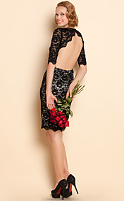 TS Sexy Elastic Backless Lace Dress