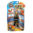 wwe wrestling professionnels Jeff Hardy action figure à la case de couleur