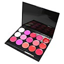 Danni 15 lip gloss colore make-up palette