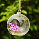 Artistic Ball Shaped Hanging Glass Vase