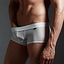 Men's Sexy Mesh Breathable Underpants