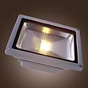 20w ha condotto la luce esterna impermeabile flood